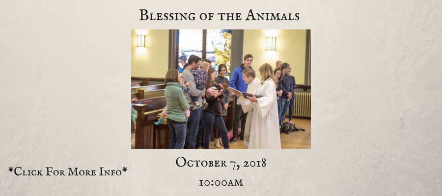 Blessing-of-the-Animals-1