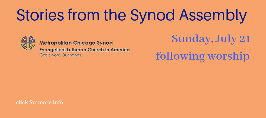 Stories-from-the-Synod-Assembly