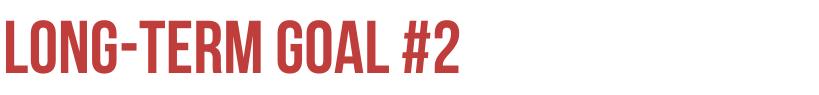 Lon-term Goal #2